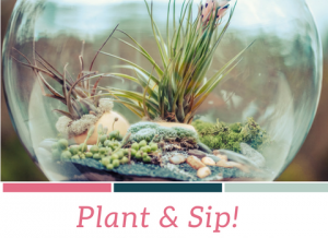 NCAC_Plant&Sip_banner